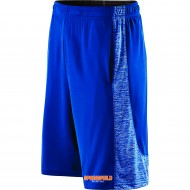 Springfield Basketball HOLLOWAY Electron Shorts